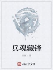 兵魂藏锋最新章节