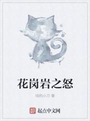 花岗岩之怒最新章节