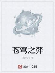 苍穹之弈最新章节