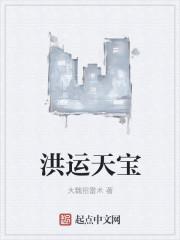 洪运天宝最新章节